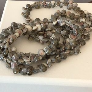 Stunning seashell necklace